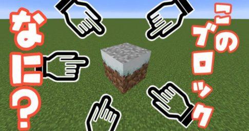 【Java版】草ブロックは白くできる!?【デバッグ棒の活用】